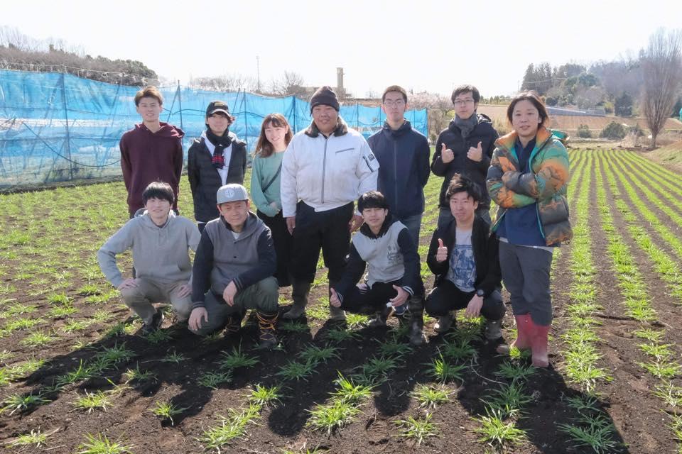 瀬谷の小麦栽培の取り組み<2020 麦踏み編>