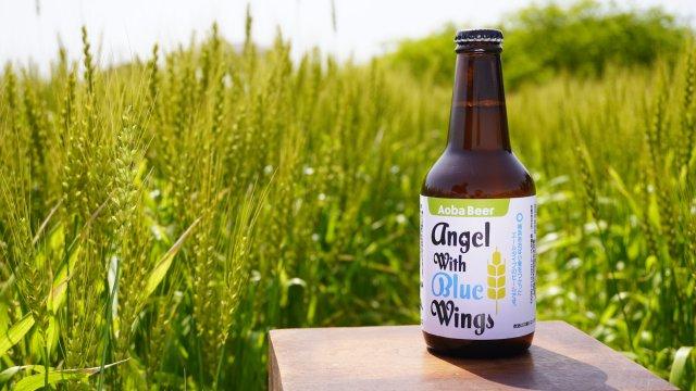 横浜あおば小麦プロジェクト×横浜ビール「Angel With Blue Wings」発売 〜横浜市青葉区で栽培された無農薬の小麦を活用し青葉区内の飲食店舗に提供、地元の方々に小麦を使ったお食事や商品を楽しんでもらう事で地産地消を推進する取り組みです。